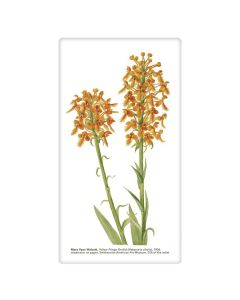 Yellow Fringe Orchid Tea Towel